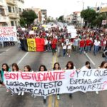 Students, their protests, and their organizations