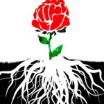 Many Green New Deals: An Ecosocialist Roundtable