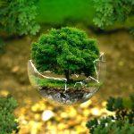 Investigador por obra determinada. Tema: sustentabilidad